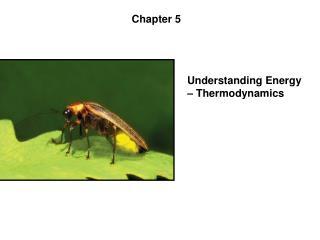 Understanding Energy – Thermodynamics