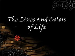 The Lines and Colors of Life