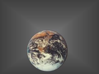 Una tercera parte del planeta                  tiene hambre, está desnutrida.