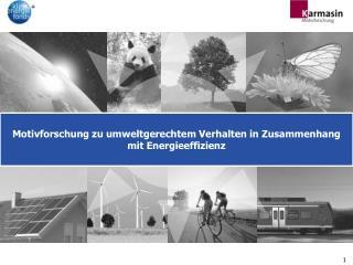 Motivforschung zu umweltgerechtem Verhalten in Zusammenhang mit Energieeffizienz