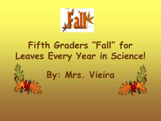 "Fifth Graders ""Fall"" for Leaves Every Year in Science!"