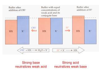 Strong base neutralizes weak acid