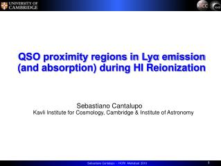 QSO proximity regions in Lyα emission  (and absorption) during HI Reionization