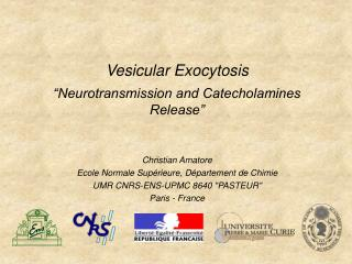 "Vesicular Exocytosis  ""Neurotransmission and Catecholamines Release"""