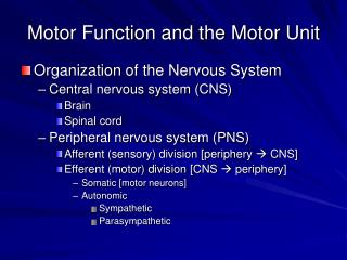 Motor Function and the Motor Unit