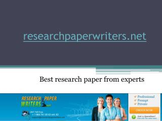 Professional Research Paper Writers
