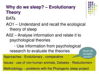 Why do we sleep? – Evolutionary Theory