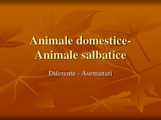 Animale domestice- Animale salbatice
