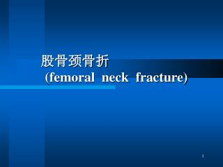 股骨颈骨折 (femoral  neck  fracture)