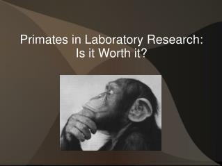 Primates in Laboratory Research: Is it Worth it?
