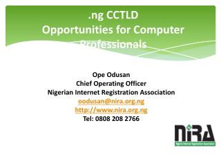 .ng CCTLD Opportunities for Computer Professionals