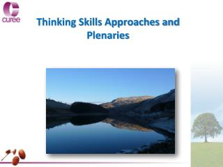 Thinking Skills Approaches and  Plenaries
