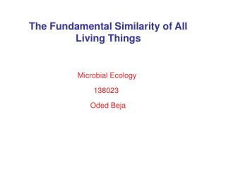 The Fundamental Similarity of All Living Things