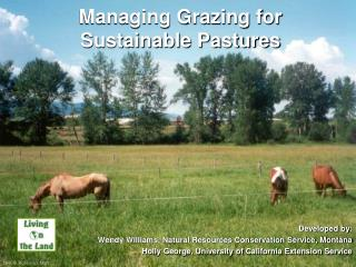 Managing Grazing for Sustainable Pastures