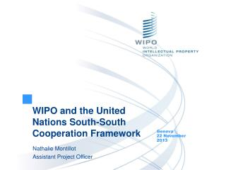 WIPO and the United Nations South-South Cooperation Framework