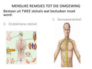 MENSLIKE REAKSIES TOT DIE OMGEWING