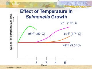 Effect of Temperature in  Salmonella  Growth