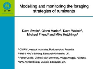Modelling and monitoring the foraging strategies of ruminants
