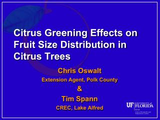 Citrus Greening Effects on Fruit Size Distribution in Citrus Trees