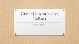 Grand Canyon Native Indians