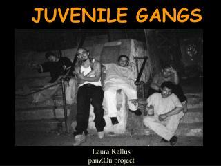 JUVENILE GANGS