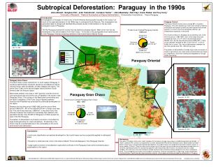 Subtropical Deforestation:  Paraguay  in the 1990s