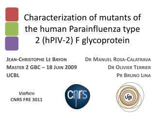 Characterization of mutants of the human Parainfluenza type 2 (hPIV-2) F glycoprotein
