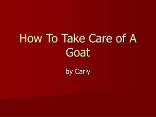 How To Take Care of A Goat