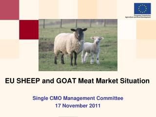 EU SHEEP and GOAT Meat Market  Situation