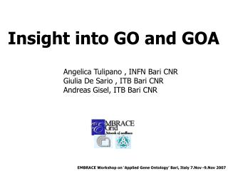 Insight into GO and GOA