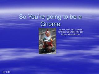 So You're going to be a Gnome