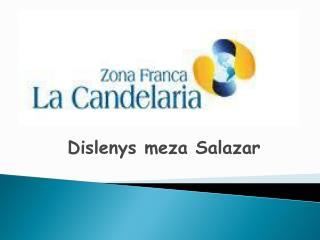 Dislenys meza Salazar