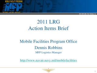 2011 LRG  Action Items Brief