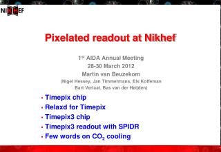 Pixelated  readout at Nikhef