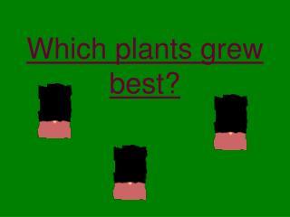 Which plants grew best?