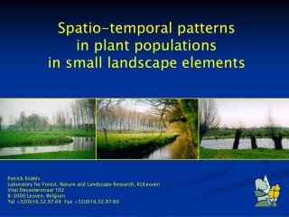 Spatio-temporal patterns in plant populations in small landscape elements