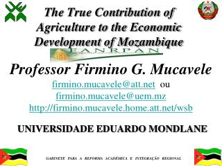 The True Contribution of Agriculture to the Economic Development of Mozambique