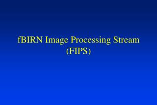 fBIRN Image Processing Stream (FIPS)