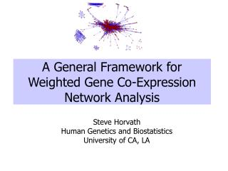 A General Framework for Weighted Gene Co-Expression Network Analysis