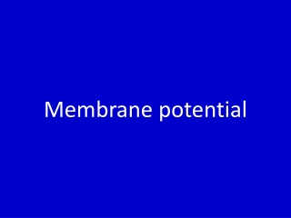 The Membrane Potential