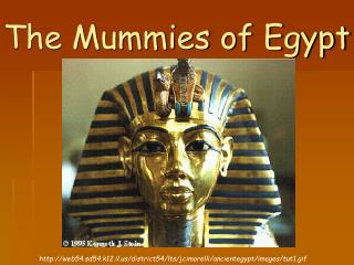 The Mummies of Egypt