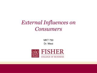 External Influences on Consumers