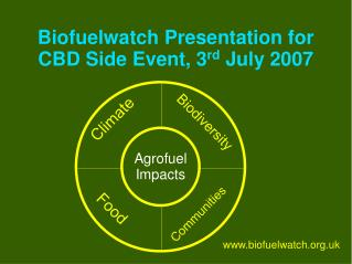 Biofuelwatch Presentation for CBD Side Event, 3 rd  July 2007