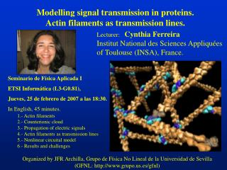 Modelling signal transmission in proteins. Actin filaments as transmission lines.