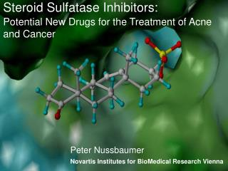 Steroid Sulfatase Inhibitors:  Potential New Drugs for the Treatment of Acne and Cancer