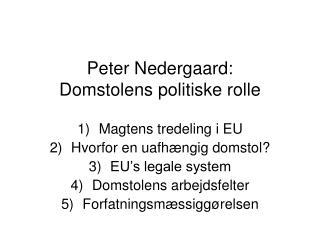 Peter Nedergaard: Domstolens politiske rolle