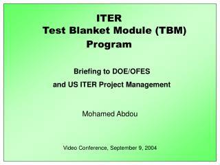 Test Blanket Module (TBM)