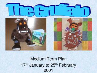 Medium Term Plan 17 th  January to 25 th  February 2001