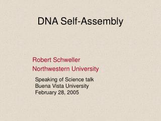 DNA Self-Assembly