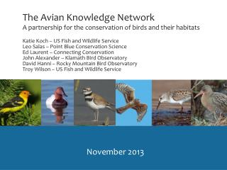The Avian Knowledge Network A partnership for the conservation  of  birds and their habitats
